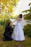 Couples heureux de mariage Mariée et marié en stationnement Images stock