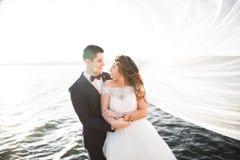 Couples heureux de mariage restant au-dessus du beau paysage Photographie stock