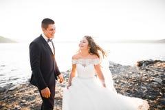 Couples heureux de mariage restant au-dessus du beau paysage Images stock
