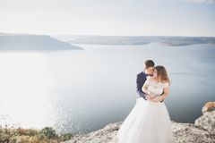Couples heureux de mariage restant au-dessus du beau paysage Image stock