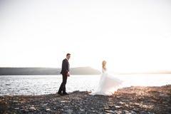 Couples heureux de mariage restant au-dessus du beau paysage Image libre de droits