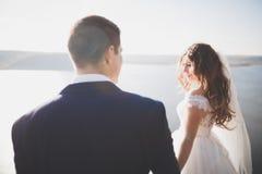 Couples heureux de mariage restant au-dessus du beau paysage Images libres de droits