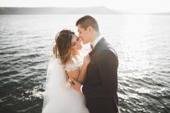 Couples heureux de mariage restant au-dessus du beau paysage Photos stock
