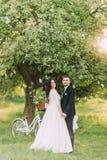 Couples heureux de nouveaux mariés posant sur la pelouse en parc ensoleillé vert La bicyclette près a décoré l'arbre au fond Photo stock