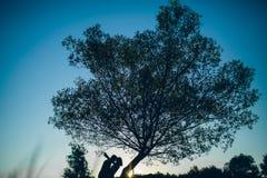 Couples heureux de silhouette dans l'amour Image stock