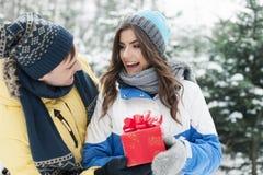 Couples heureux en hiver Images stock
