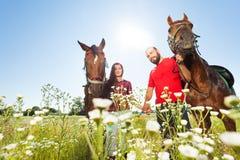 Couples heureux marchant avec des chevaux dans le domaine d'été Photographie stock libre de droits