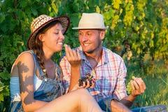 Couples heureux partageant des raisins dans le vignoble Photos stock