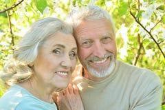 Couples heureux posant en parc Photographie stock libre de droits
