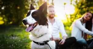 Couples heureux romantiques dans l'amour appréciant leur temps avec des animaux familiers en nature Images libres de droits