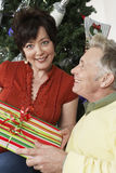 Couples heureux tenant le cadeau Photographie stock