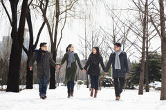 Couples holding hands in park covered in snow Stock Photography