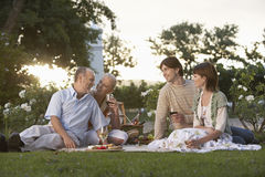 Couples Holding Wine Glasses On Picnic Royalty Free Stock Photo