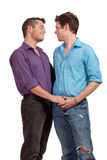 Couples homosexuels Image stock