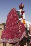 Couples indiens colorés Images libres de droits