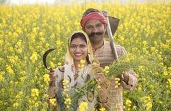 Couples indiens ruraux cultivant dans le domaine agricole photo stock