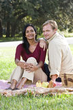 Couples interraciaux ayant le pique-nique dans le stationnement image stock