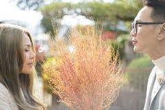 Couples japonais dans le moment romantique avec le foin Image stock