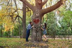 Couples jetant un coup d'oeil autour des bords opposés d'arbre Concept d'histoire et de datation d'amour Image stock