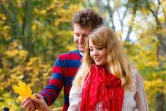 Couples jouant avec la feuille en parc d'automne Images stock
