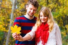 Couples jouant avec la feuille en parc d'automne Photo libre de droits
