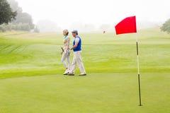 Couples jouants au golf marchant sur le putting green Image stock