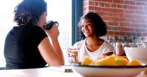 Couples lesbiens agissant l'un sur l'autre les uns avec les autres tout en prenant le petit déjeuner banque de vidéos