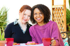 Couples lesbiens mélangés heureux Image stock