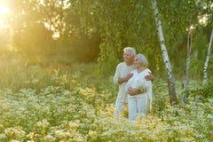 Couples mûrs affectueux Photos libres de droits
