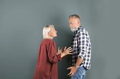 Couples mûrs ayant l'argument photo stock