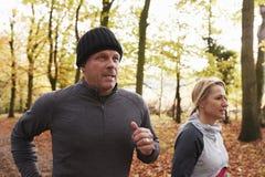 Couples mûrs fonctionnant par Autumn Woodland Together image stock