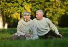 Couples mûrs Photo stock