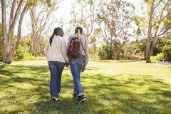 Couples mûrs allant sur le pique-nique en parc ensemble Photos stock