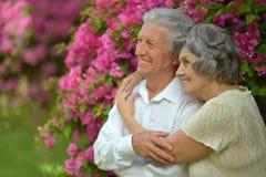 Couples mûrs dans l'amour Photo stock