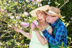 Couples mûrs dans les chapeaux de soleil embrassant le jardin, en étreignant et le sourire Images libres de droits