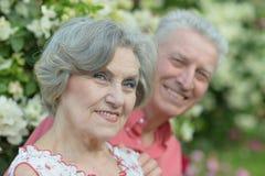 Couples mûrs dessus en parc d'été Photo stock