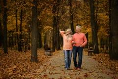 Couples mûrs en parc d'automne Photographie stock libre de droits