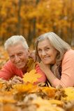 Couples mûrs en parc d'automne Photos libres de droits