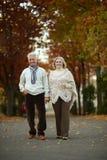 Couples mûrs en parc d'automne Images stock