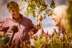 Couples mûrs heureux faisant du jardinage ensemble Image stock