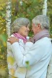 Couples mûrs heureux marchant en parc Photographie stock libre de droits