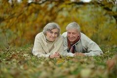 Couples mûrs heureux marchant en parc Photo stock