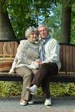 Couples mûrs marchant en parc Photographie stock libre de droits