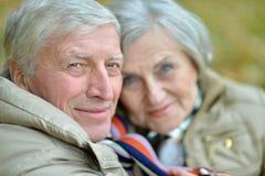 Couples mûrs marchant en parc Image libre de droits