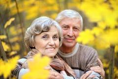 Couples mûrs marchant en parc Images stock