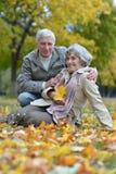 Couples mûrs marchant en parc d'automne Image libre de droits