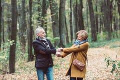 Couples mûrs marchant en parc d'automne Photos stock