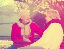 Couples mûrs parlant en parc photos stock
