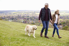 Couples mûrs prenant le golden retriever pour la promenade photos libres de droits