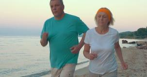 Couples mûrs pulsant sur la plage banque de vidéos